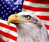 Eagle in front of an American flag
